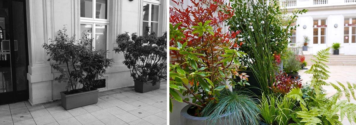 Un jardinier paysagiste aménage la cour intérieure d'un hôtel particulier rville