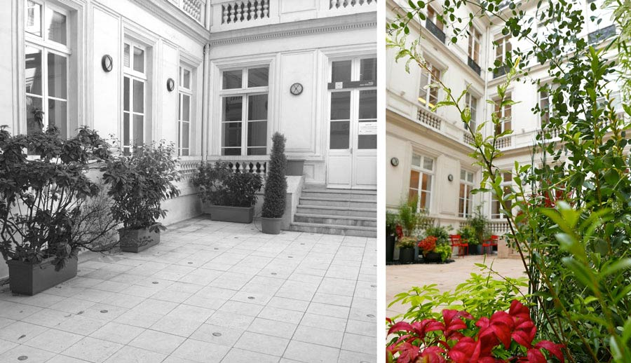 Avant - aprés de la cour d'un hotel particulier aprés intervention d'un jardinier paysagiste